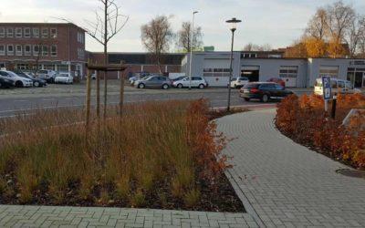 Grünanlagen Nessestraße